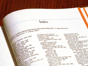 A book index